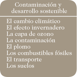 pastilla04